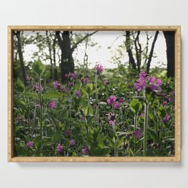 RED CAMPION WILDFLOWERS IN SUMMER WOODLAND GLADE Serving Tray