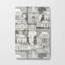 Washington DC toile gray Metal Print