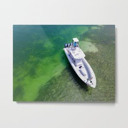 Grizzely in the Keys Metal Print