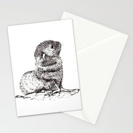 Baby Seal Stationery Cards