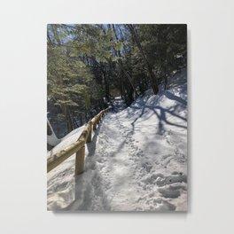 Sabbaday Brook Trail NH (3) Metal Print
