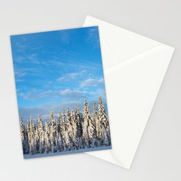 Spruce After Snow Storm Color Stationery Cards