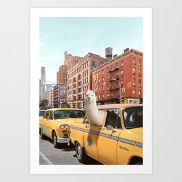 Alpaca in New York Art Print