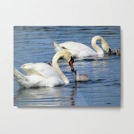 Swan's diner Metal Print