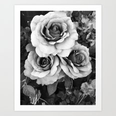 Black and White Roses Wall Decor- Surreal Black White Roses Flower Home Decor Art Print