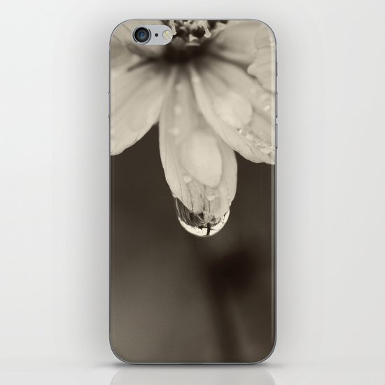 Waterdrop iPhone & iPod Skin