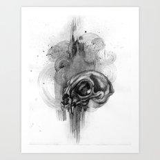 Cat Skull Charcoal Drawing Art Print