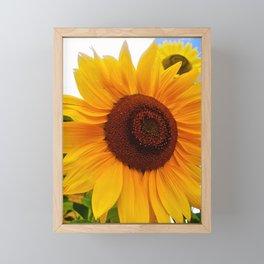 Yellow As The Sun Framed Mini Art Print