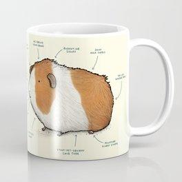 Anatomy of a Guinea Pig Coffee Mug