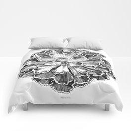 Echeveria engraving Comforters