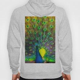 The Peacock Hoody