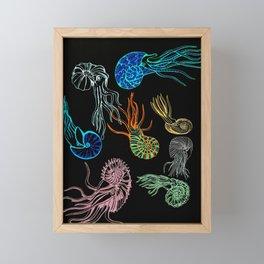 Ammonites at Night Framed Mini Art Print