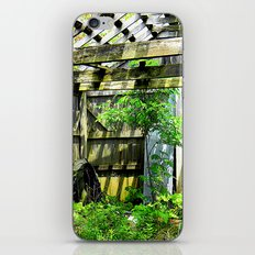 Nature Taking Over 2 iPhone & iPod Skin