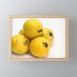 Guava fruits Framed Mini Art Print