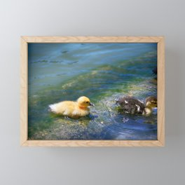 Follow Me - Colorful Framed Mini Art Print