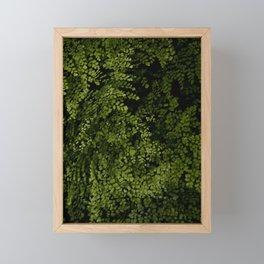 Small leaves Framed Mini Art Print