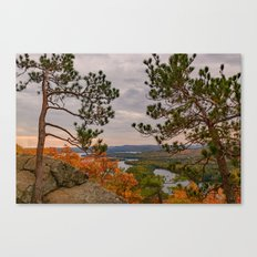 Eagle cliff pines Canvas Print