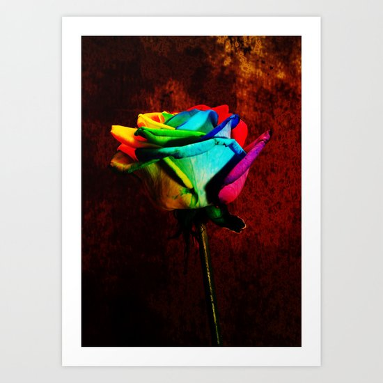 Rainbow rose 2 Art Print