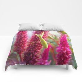 Red flower and grasshopper Comforters