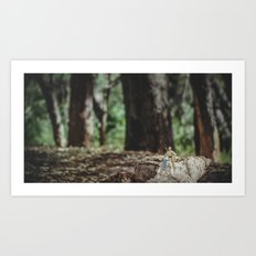 Droids in the forest Art Print
