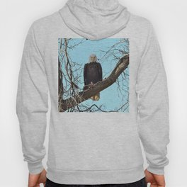 Eagle with fish Hoody