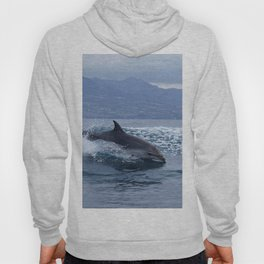 Wild and free bottlenose dolphin Hoody