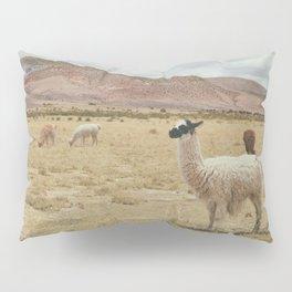 Lama Pampa bolivie Pillow Sham
