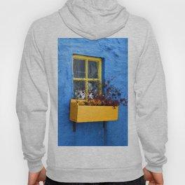 FLOWER - BOX - YELLOW - BLUE - WALL - PHOTOGRAPHY Hoody