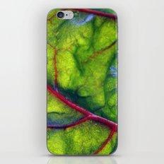 Swiss Chard iPhone & iPod Skin