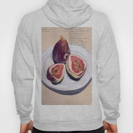 Figs on a Plate in Gouache Hoody