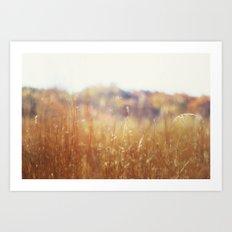 Reeling away November's dyed yarns Art Print