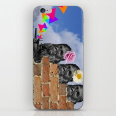 Only Two Flowers iPhone & iPod Skin