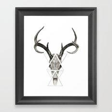 Deer Skull Framed Art Print