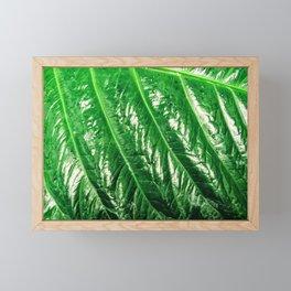 Leafy Greens Framed Mini Art Print