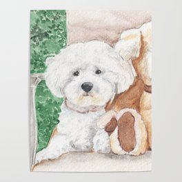 Two Bichons and A Friend Poster