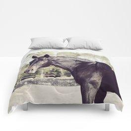 Beautiful in Blac 2 Comforters