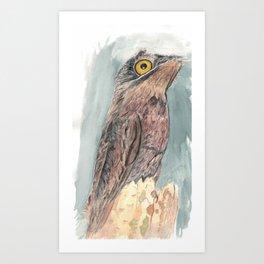Watercolor Birds: Common Potoo Art Print