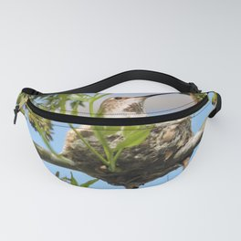 Hanging Out Over B Street Fanny Pack