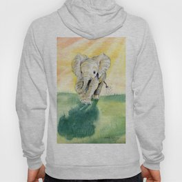 Colorful Baby Elephant Hoody