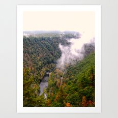 Pine Creek Gorge Art Print