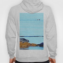Seal, Pup and Eider Duck Hoody