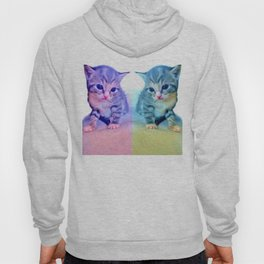 Cute Colorful Cat Couple Hoody