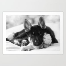 Black white portrait of a shepherd puppy. Art Print