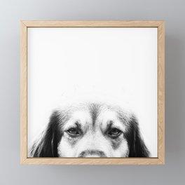 Dog portrait in black & white Framed Mini Art Print