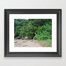 Borneo Bako National Park Framed Art Print