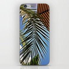 Summer 2.0.1.2. iPhone & iPod Skin