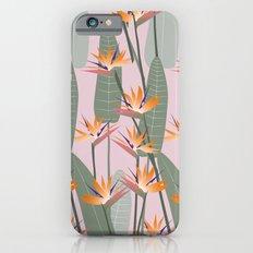 Bird of Paradise - pink iPhone 6s Slim Case