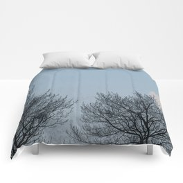 Winter Moon Comforters