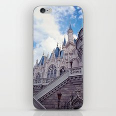 The wild blue yonder  iPhone & iPod Skin