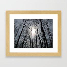 White Sky, Black Trees Framed Art Print